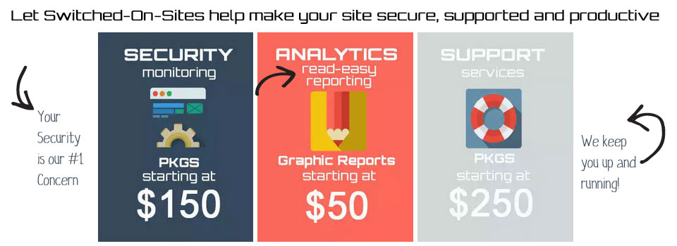 Web Security and Support Services